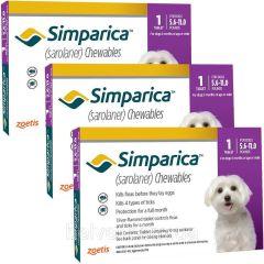 Симпарика 10 мг 1 шт, жевательные таблетки для собак 2,5-5 кг (Zoetis) в Таблетки от блох и клещей.